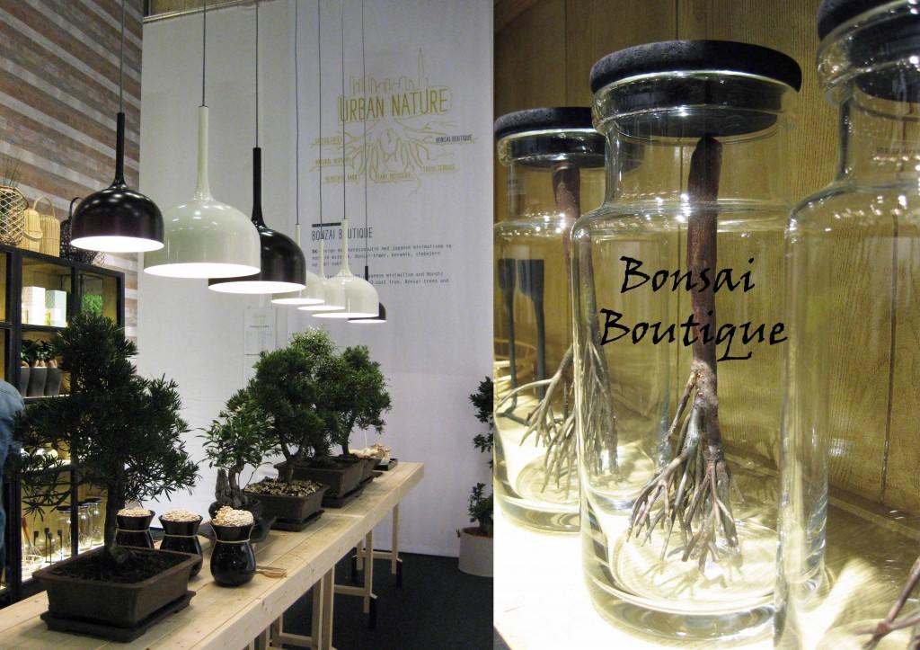 bonsai boutique