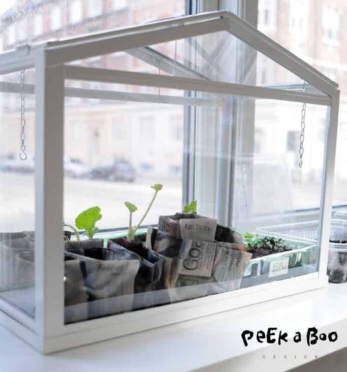 mini greenhouse w plants by Peekaboo design