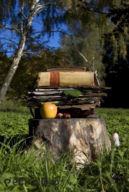 bladpresse til forevigelse af skovens smukke blade.