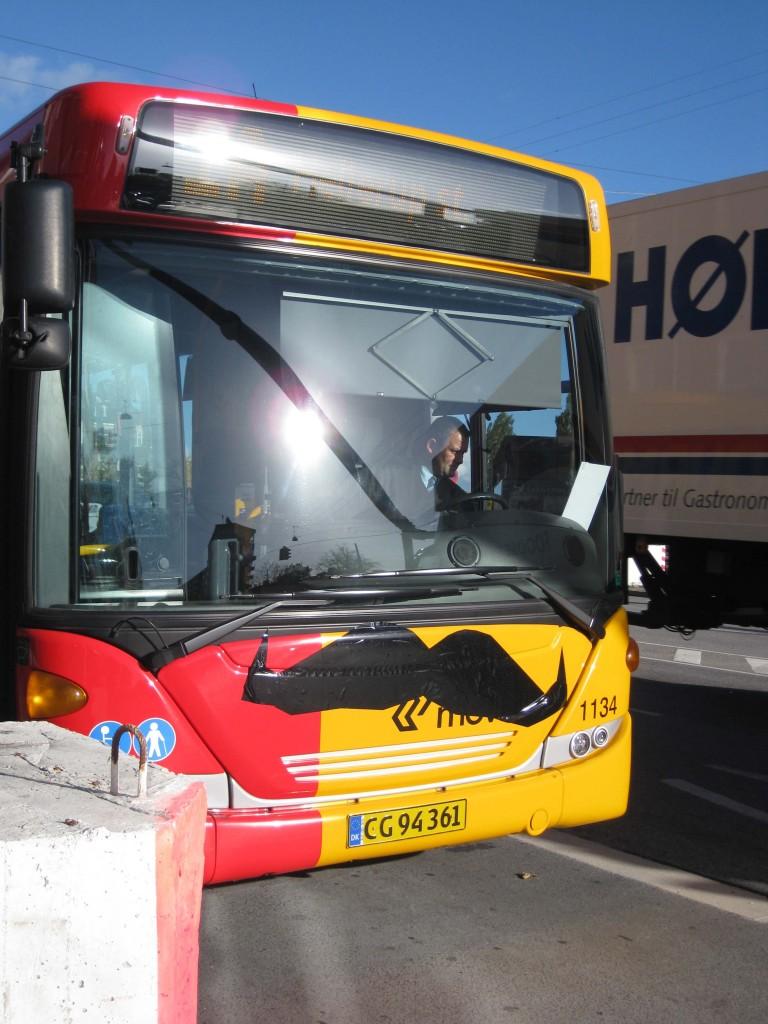 Skæg med bus eller er det omvendt ?