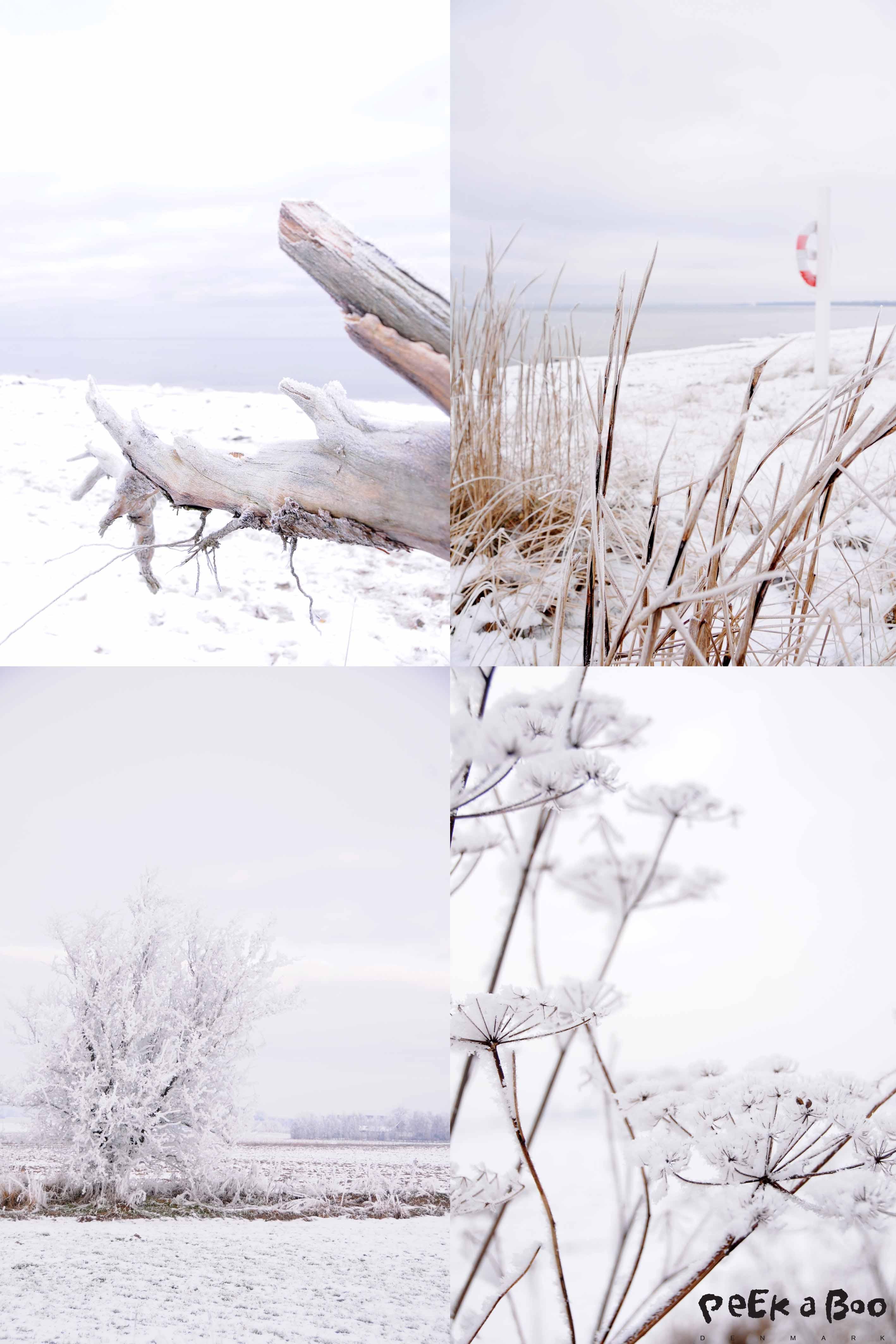 Winter Wonderland, denmark feb. 2013