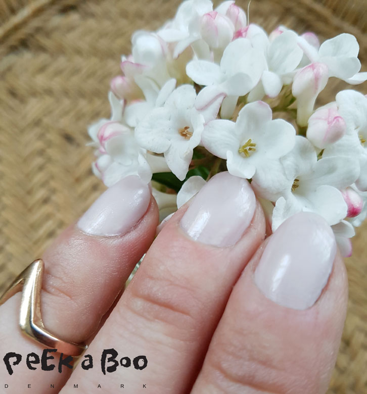 summer nails with all good treatments and nude lacquer.